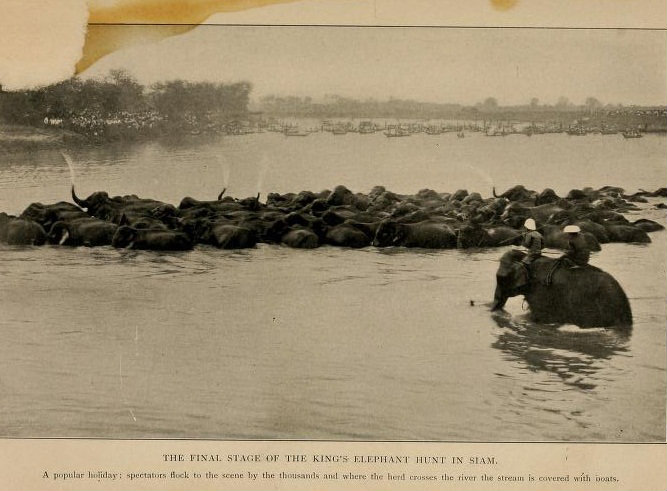 THE GEM 8 OCT 2015 : HOWEVER SLOW, HOWEVER FAST, THE RIVER STILL KEEPS FLOWING PAST.