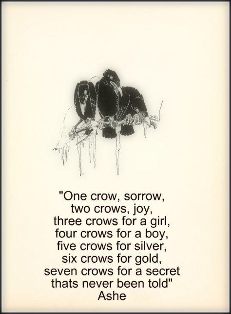 00000-crows