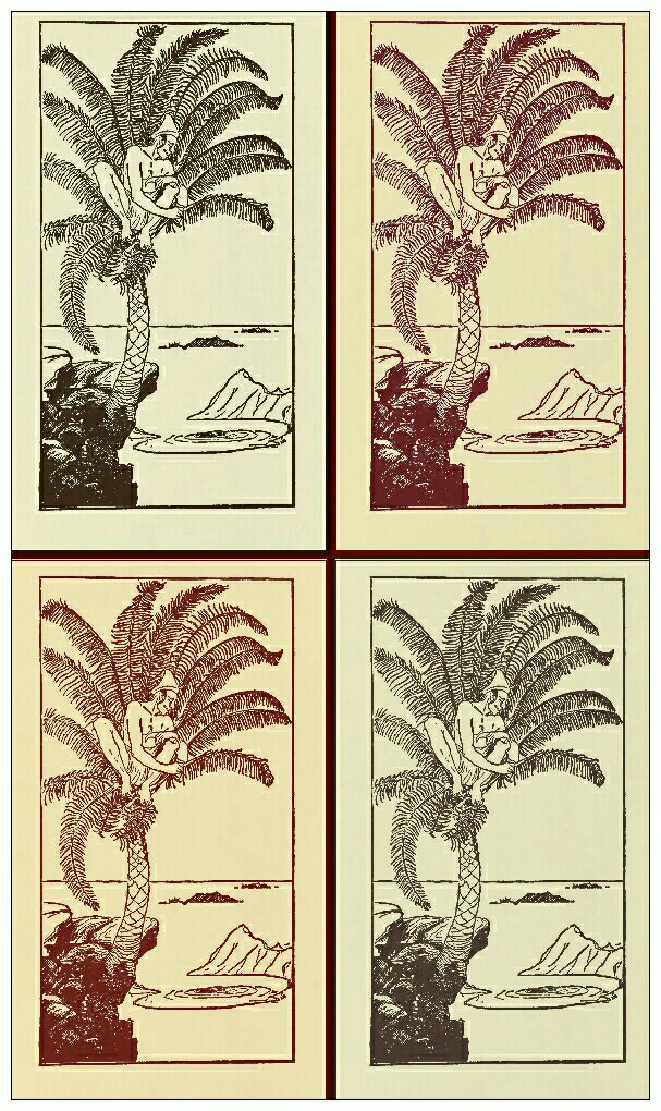 THE GEM 5 SEP 2017 : You may well have two legs but you still can't climb two trees at the same time.