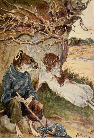 """THE GEM 18 JAN 2018 : """"Believe me, my young friend, there is nothing – absolutely nothing – half so much worth doing as simply messing about in boats."""" ― Kenneth Grahame, The Wind in the Willows"""